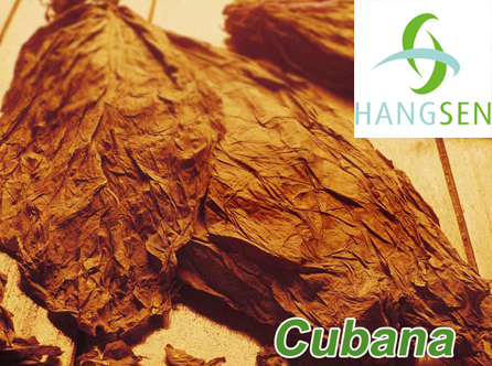 Hangsen E-Liquid 10 ml VG - Cubana