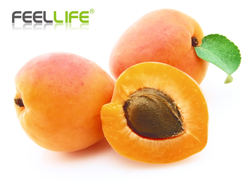 Feellife E-Juice 10ml VG/PG Mix Apricot flavour