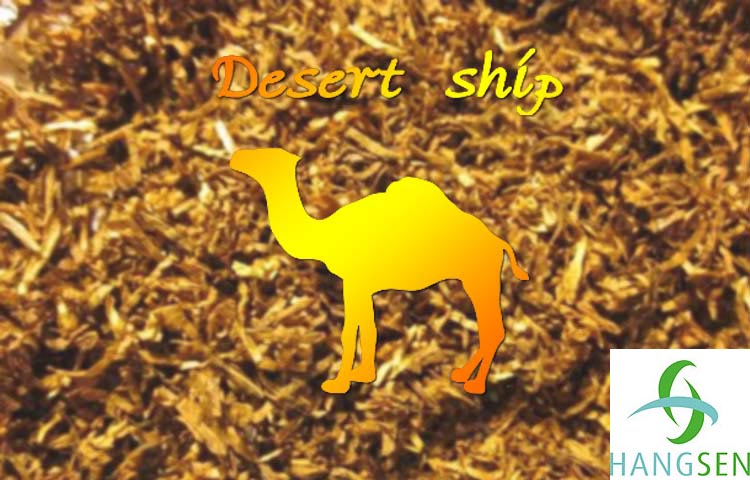 Hangsen E-Liquid 10 ml VG - Desert Ship