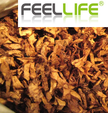 Feellife E-Juice 10ml VG/PG Mix L red M flavour