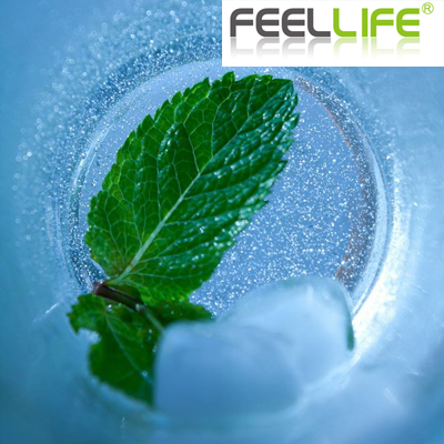 Feellife E-Juice 10ml VG/PG Mix Ice Mint flavour