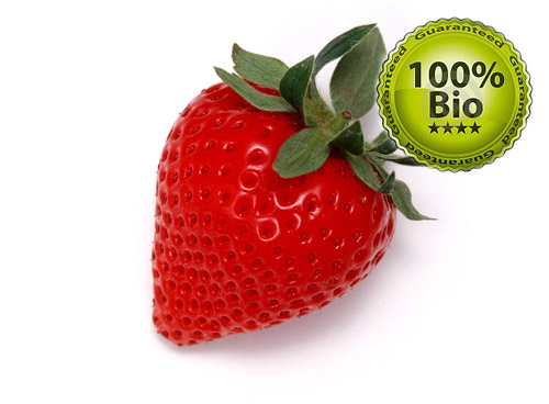 Vapo Bio E-Liquid 10ml Strawberry ( organic 100% natural )