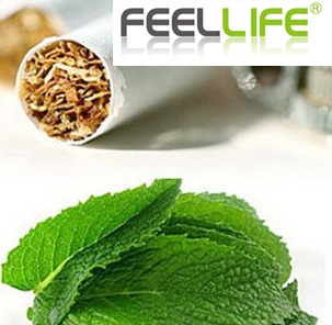 Feellife E-Juice 10ml VG/PG Mix Virgin menthol flavour