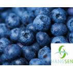 Hangsen E-Liquid 10 ml VG - Blueberry