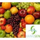 Hangsen E-Liquid 10 ml VG - Fruit mix ( fruit's flavour )