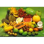 Vapo E-Liquid 10ml VG - tropical fruits